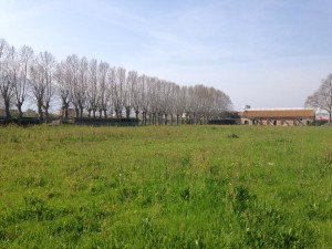 1-Scafati-Parco-Polverificio