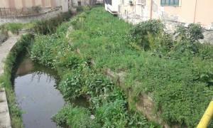 2-canale bottaro