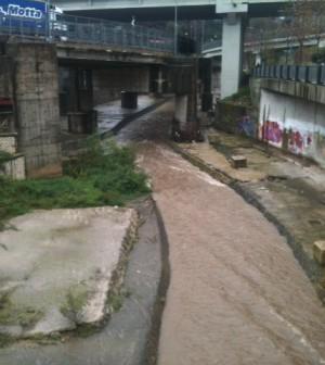 fiume_irno