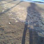 Spiaggia di Santa Teresa, ira dei bagnanti